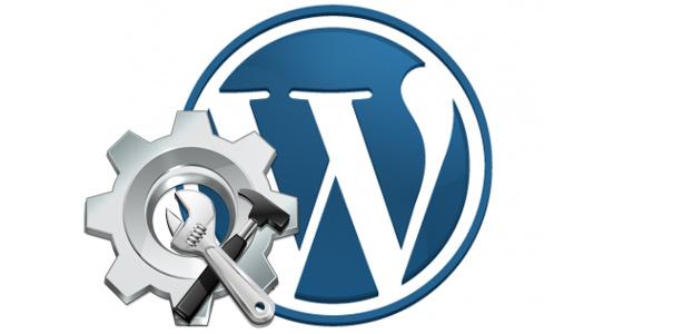 Wordpress Plugins Still Standing on Top Popularity of 2016 01